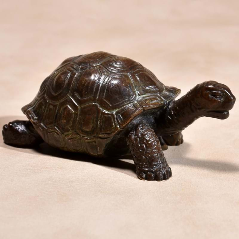 A bronze model of a tortoise, probably Paduan, perhaps early 16th century
