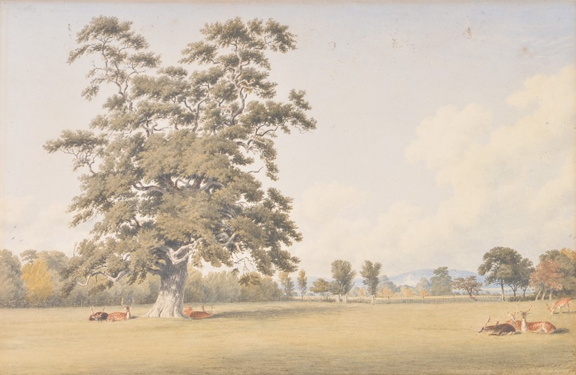 Inline Image - Lot 45: William Turner of Oxford (British 1789-1862), View near Whiteleaf Cross, Bucks, watercolour, 21 x 32.5cm (8¼ x 12¾ in.)  Provenance: Frank T. Sabin, London | Sold for £930