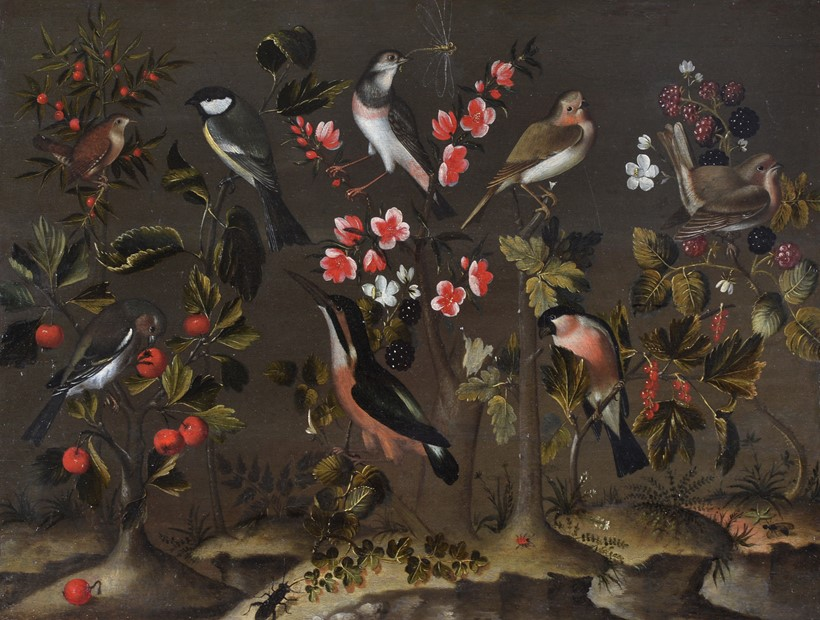 Inline Image - Attributed to Charles Collins (British c1680-1744), 'Study of birds, flowers and insects', Oil on panel | Sold for £25,000