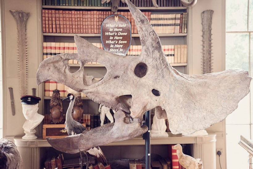 Inline Image - Lot 186: THE SKULL OF A TRICERATOPS, HELL CREEK FORMATION, MONTANA | Est. £180,000-250,000 (+fees)